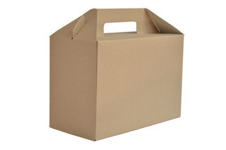 Carry pack large 13x27x18cm high - Vegware